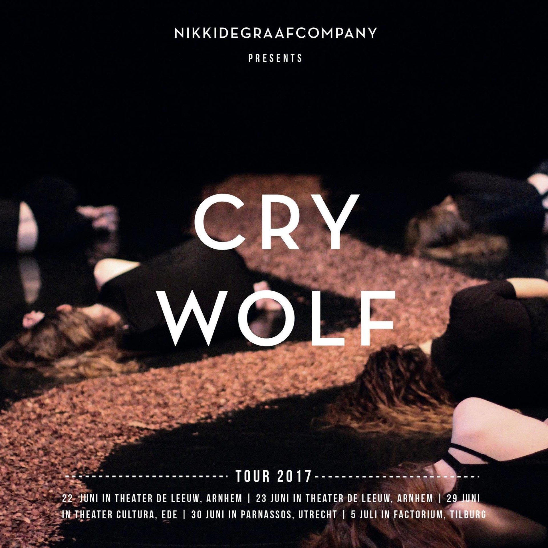 Rosine Langbroek Cry Wolf